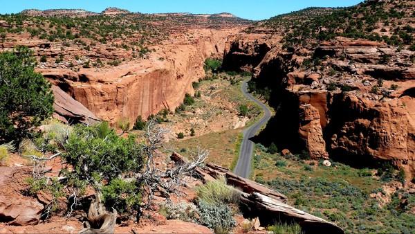 Long Canyon Burr TRail Road Utah