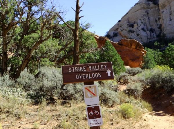 Panneau Strike Valley Overlook Upper Muley Twist Canyon Burr Trail Road Utah