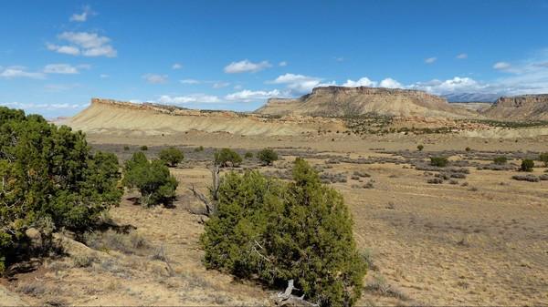 Paysage Notom Road Utah