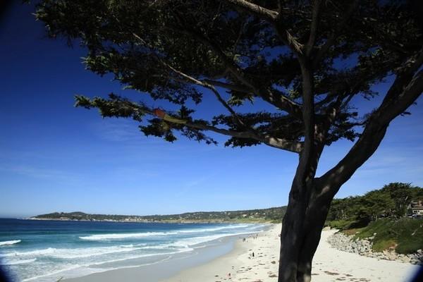 Carmel Beach Carmel