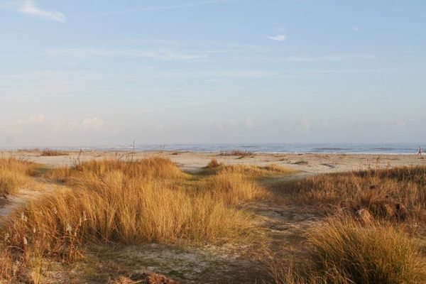 Sullivan Island Beach Charleston Caroline du Sud