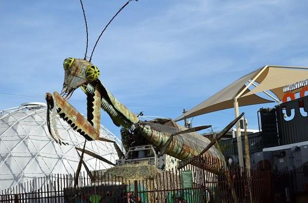 Mante religieuse Container Park Downtown Las Vegas