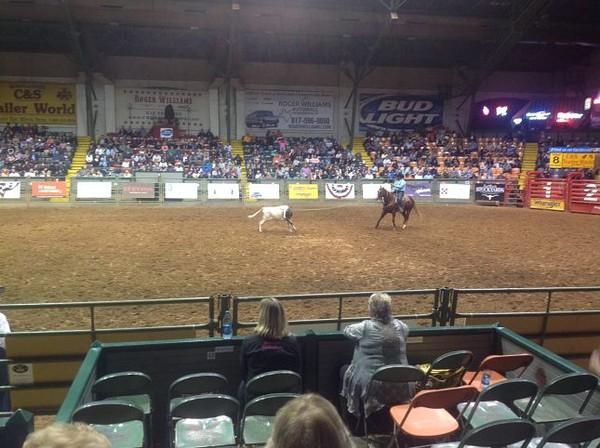 Down Roping Stockyard Championship Rodeo Fort Worth Texas