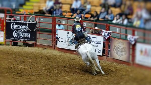 Saddle Bronc Riding Stockyard Championship Rodeo Fort Worth Texas