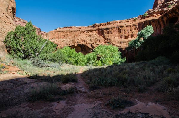 Marche vers Neon Canyon Hole in the Rock Road Utah