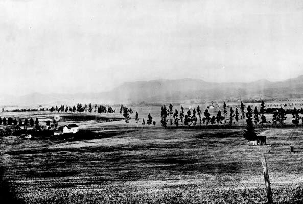 Hollywood en 1885