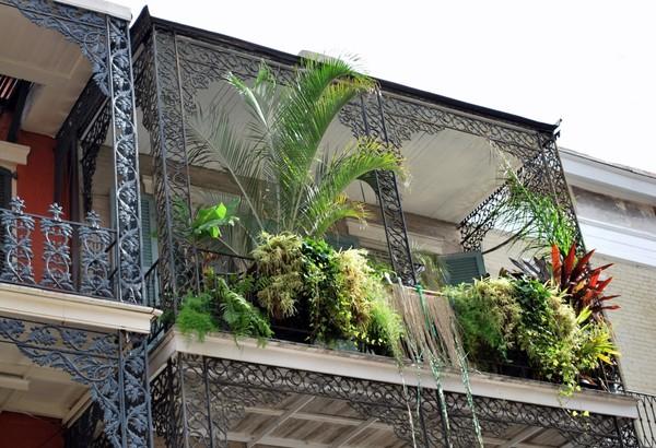 Balcon luxuriant La Nouvelle-Orléans Louisiane