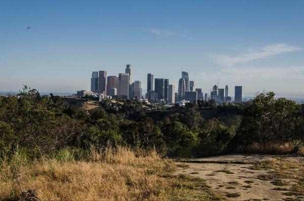 Point de vue sur Downtown depuis Elysian Park Los Angeles