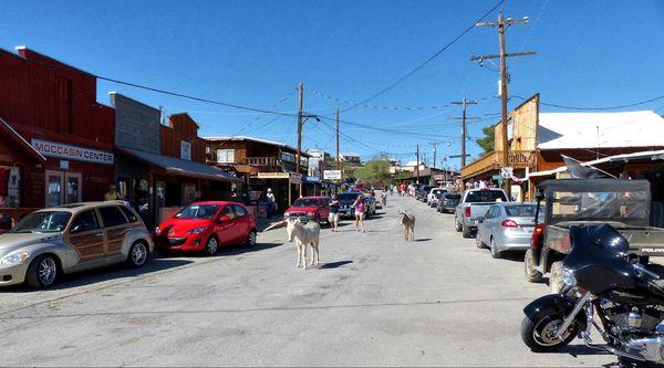 Main Street Oatman Arizona