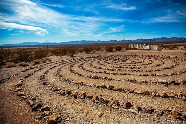 Desert Flower Rhyolite Ghost Town