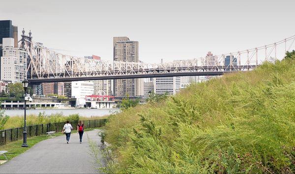 Queensboro Bridge depuis Southpoint Park Roosevelt Island New York