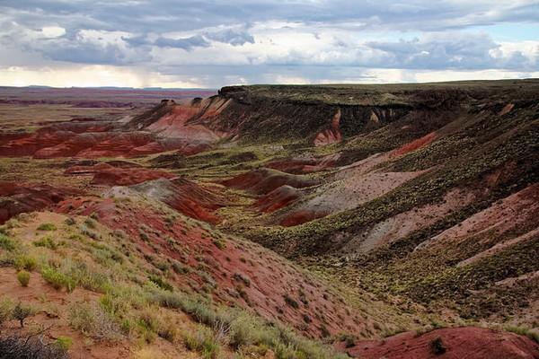 Painted Desert Petrified Forest Arizona