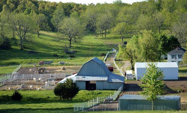 paysages fermiers et verdoyants Route 66 Missouri