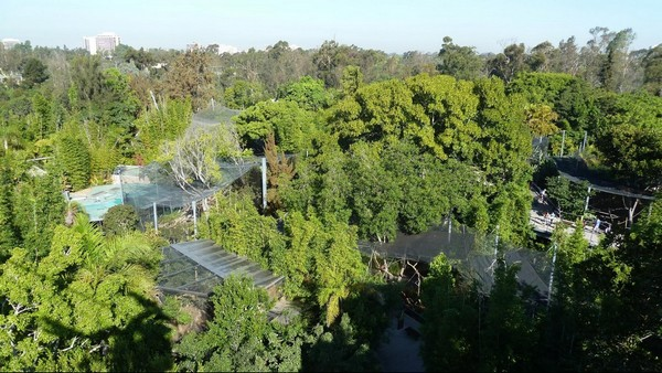Le zoo vue du Skyfari San Diego