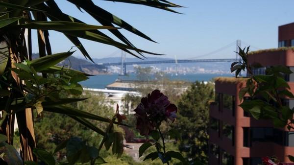 Vue depuis Filbert Steps San Francisco