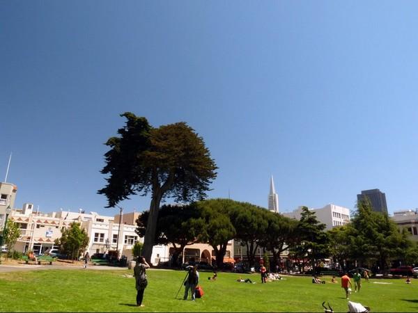 Washington Square San Francisco