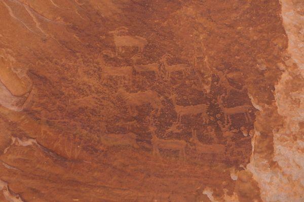 Pétroglyphes indiens White Pocket Arizona