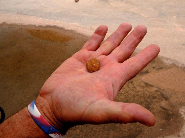 Le guide montre une pointe de flèche White Pocket Arizona